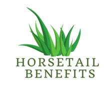 Horsetail Benefits Logo